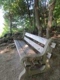 Деревянная скамья в лесе Стоковое фото RF