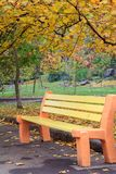 Деревянная скамья в парке города в осени Стоковое Изображение RF