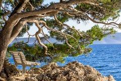 Деревянная скамья около моря Стоковое Фото