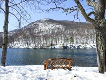 Деревянная скамья сцены Snowy обозревая гессенскую гору Нью-Йорк медведя озера Стоковые Фотографии RF
