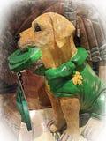 Деревянная собака темпового сальто сальто Стоковое Изображение RF