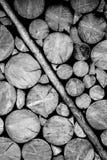 Деревянная стена журнала черно-белая Стоковые Изображения