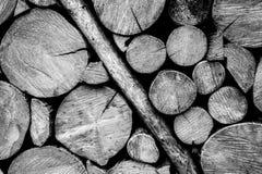 Деревянная стена журнала черно-белая Стоковые Изображения RF