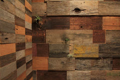 Деревянная стена Стоковые Фотографии RF