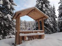 Деревянная стойка в снежном лесе Стоковая Фотография