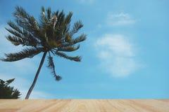 Деревянная столешница на предпосылке кокосовой пальмы и голубого неба Стоковое фото RF