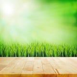 Деревянная столешница на абстрактной предпосылке зеленого цвета природы стоковое фото rf