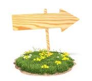 Деревянная стрелка на траве Стоковые Изображения RF