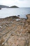 Деревянная структура старта Стоковое фото RF