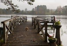 Деревянная стыковка на озере стоковое изображение rf