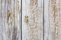 Деревянная текстура двери Стоковая Фотография