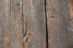 Деревянная текстура двери Стоковые Изображения
