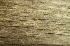 Деревянная текстура, деревянная предпосылка и учреждение стоковое изображение rf
