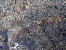 Деревянная текстура журнала Стоковые Фотографии RF