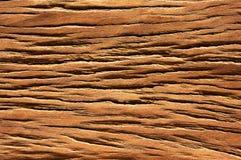Деревянная текстура зерна Стоковое фото RF