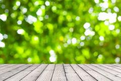 Деревянная текстура и естественная зеленая предпосылка Стоковая Фотография