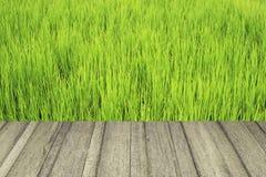 Деревянная текстура и зеленое поле Стоковые Фотографии RF