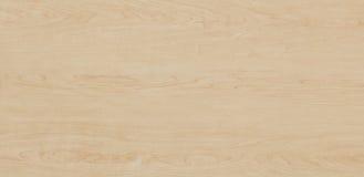 Деревянная текстура - клен стоковые изображения