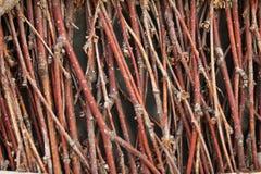 Деревянная текстура предпосылки ветви Стоковая Фотография