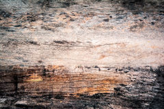 Деревянная текстура предпосылки Стоковые Изображения