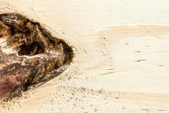 Деревянная текстура сосновой древесины Стоковая Фотография RF