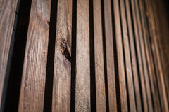 Деревянная текстура с вертикальными досками в перспективе Стоковые Фотографии RF