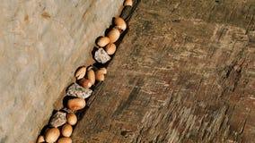 Деревянная текстура с жолудями Стоковые Фотографии RF