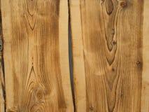 Деревянная текстура с кольцами Стоковые Фотографии RF