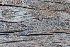 Деревянная текстура с ржавым ногтем Стоковая Фотография RF