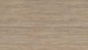 Деревянная текстура - дуб часовни Стоковое Фото