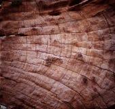 Деревянная текстура. Стоковое фото RF