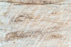 Деревянная текстура Стоковое фото RF