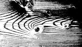 Деревянная текстура grunge Естественная деревянная изолированная предпосылка также вектор иллюстрации притяжки corel Стоковое Изображение RF