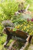 Деревянная тележка двора с цветками Стоковое Изображение