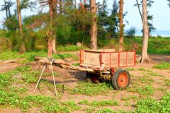 Деревянная тележка среди деревьев в индийской деревне Стоковые Изображения