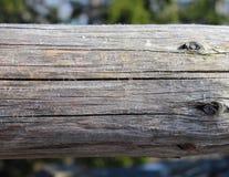 Деревянная ферменная конструкция стоковые фото