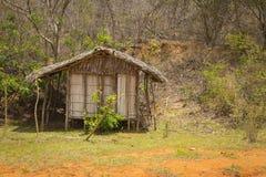 Деревянная хата в пуще Стоковое Изображение