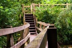 деревянное бассеина моста молчком Стоковая Фотография RF