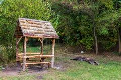 Деревянное газебо в парке, предыдущем падении Стоковые Фото