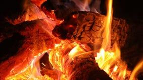 Деревянное горение с оранжевым пламенем огня в уютной древесине камина сток-видео