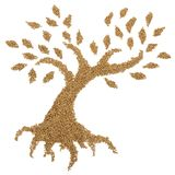Деревянное дерево лепешки Стоковое Фото