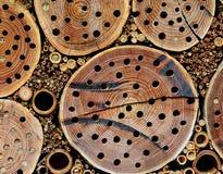 Деревянное домашнее насекомое на открытом воздухе DIY стоковые изображения