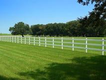 деревянное загородки белое Стоковые Изображения RF