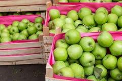 деревянное зеленого цвета пука коробки яблок зрелое Стоковые Фотографии RF