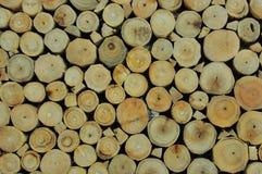 Деревянное зерно приносит совершенно таблицу, Стоковые Изображения