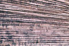 Деревянное зерно Стоковые Изображения