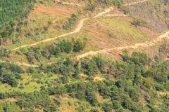 Деревянное злоупотребление вырезывания в горах Стоковое фото RF