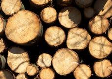 Деревянное лесохозяйство стога-Ii стоковые изображения rf