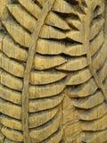 деревянное листьев поверхностное Стоковые Изображения RF