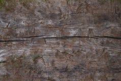 деревянное предпосылки grungy текстурированное Стоковые Фотографии RF